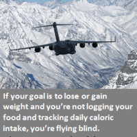 Flying Blind - If You Aren't Logging Your Food You're Flying Blind