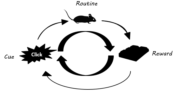Mouse Habit Loop 2
