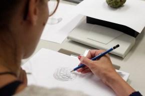 Aula de ilustração Naturalista ABRA