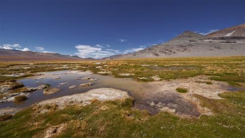 Flora, agua y montañas