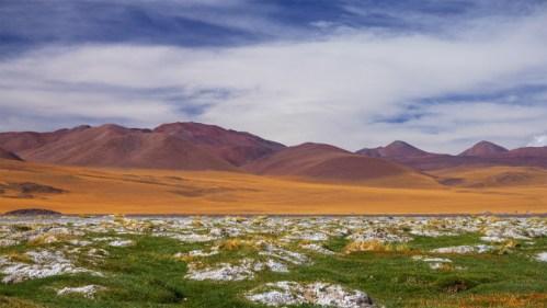 Cerros, flora y nubes
