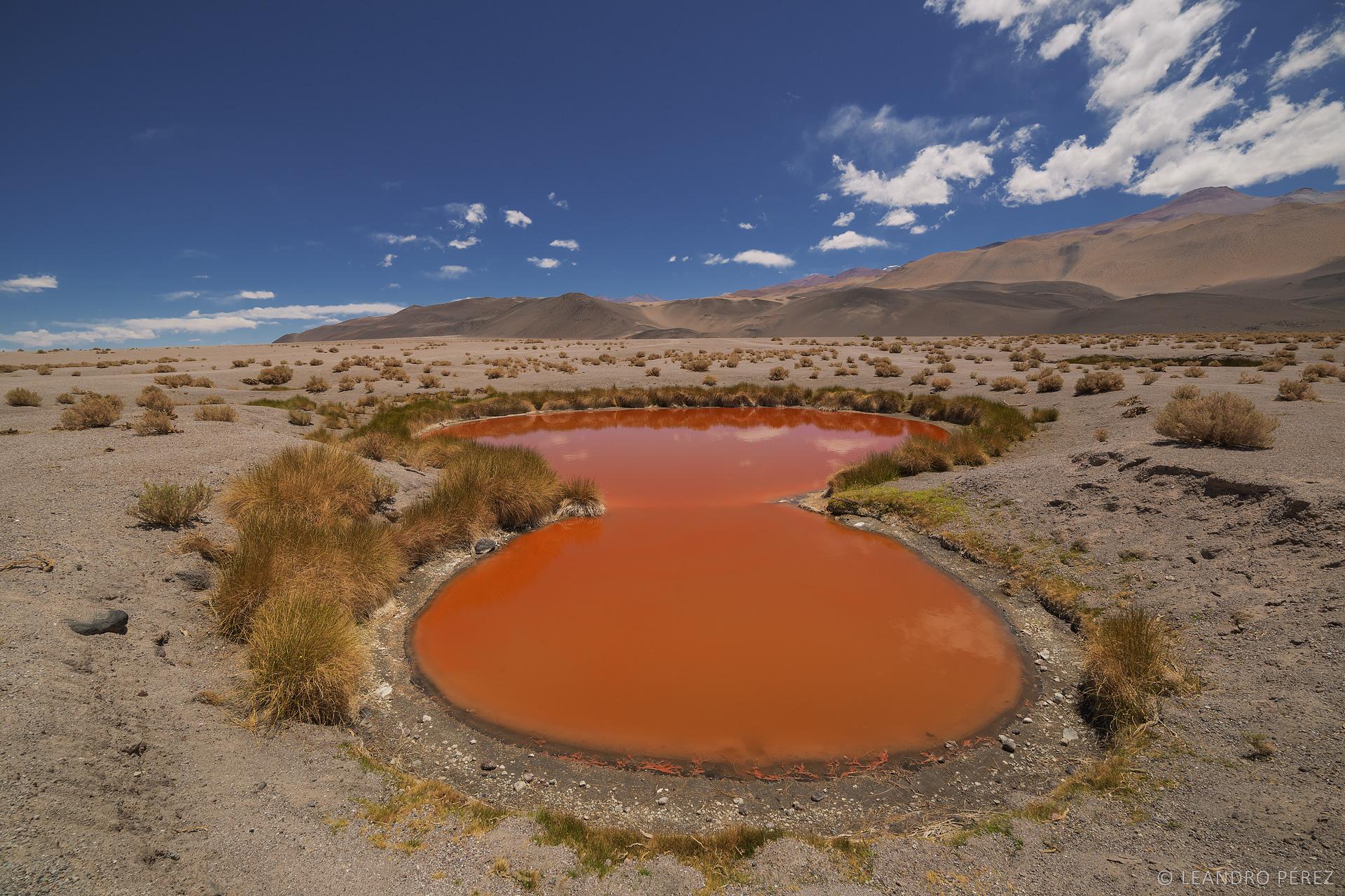 Antofagasta de la Sierra