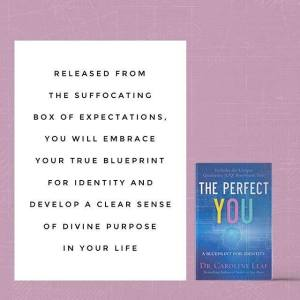 """The Perfect You"" book review"