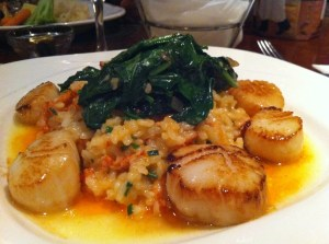 Scallops and lobster rice