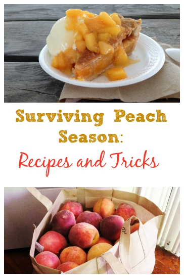 Peach Recipes Roundup – How to Survive Peach Season