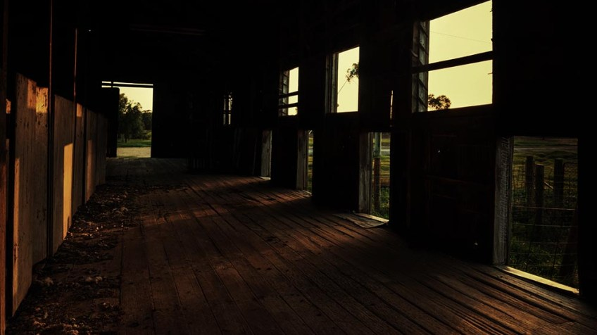 shearing-shed-woomelang-processed-sunrise
