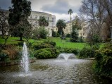 melbourne-fitzroy-gardens-conservatory-flowers-2
