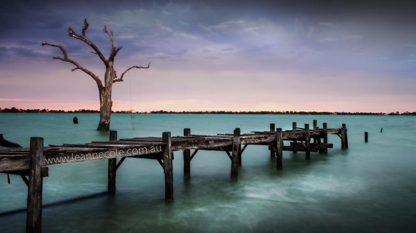 lake-charm-back-pier-tree-3
