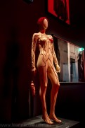 National-gallery-victoria-gaultier-exhibition-138