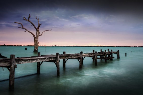 lake-charm-back-pier-tree-3