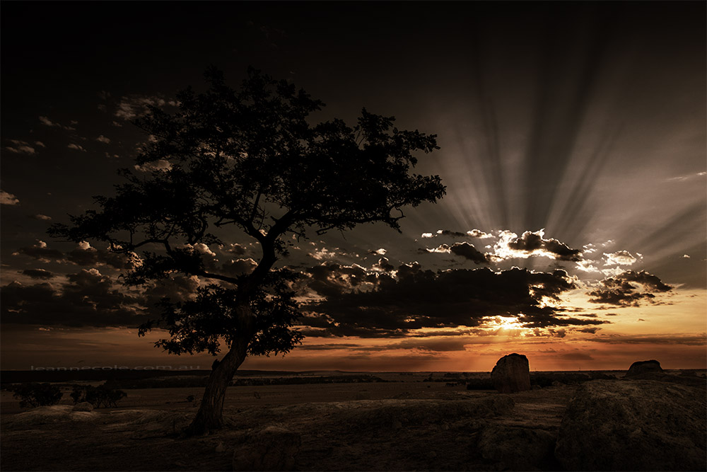 dog-rocks-sunset-sunrays-colour