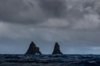 bruny-island-southcoast-cliffs-cruise-4656