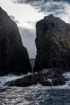 bruny-island-southcoast-cliffs-cruise-4816