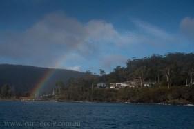 bruny-island-southcoast-cliffs-cruise-5047
