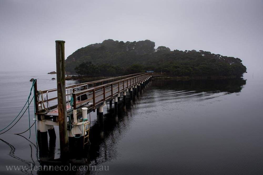 tasmania-strahan-worldheritage-gordon-river-3517