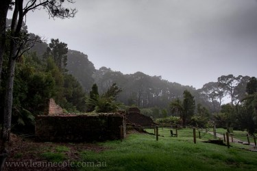 tasmania-strahan-worldheritage-gordon-river-3622