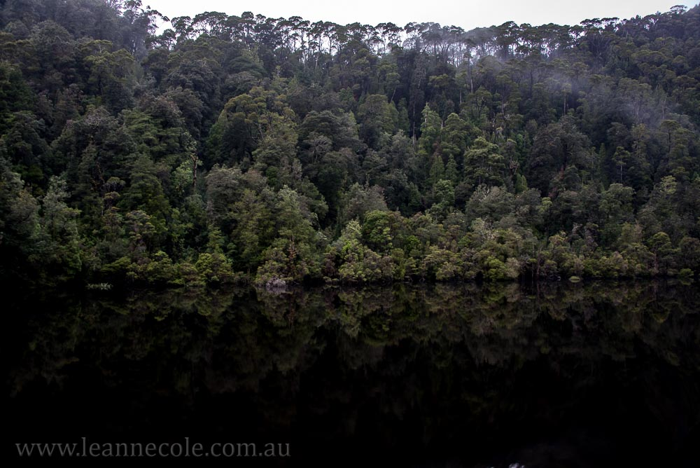 tasmania-strahan-worldheritage-gordon-river-3860