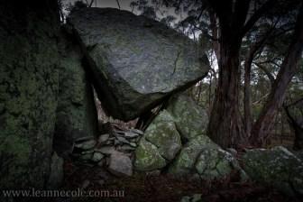 castlemaine-mountain-rocks-bushland-fog-8219