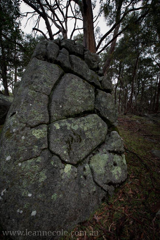 castlemaine-mountain-rocks-bushland-fog-8281