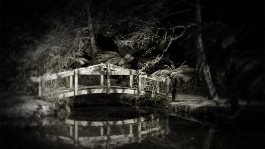 alfred-nicholas-bridge-lensbaby-velvet56