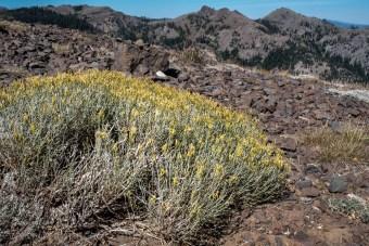 lake-tahoe-mountains-squaw-valley-3205