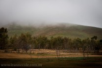 bonnie-doon-fog-winter-1033