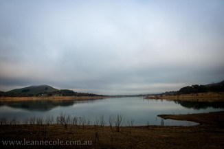 bonnie-doon-fog-winter-1039