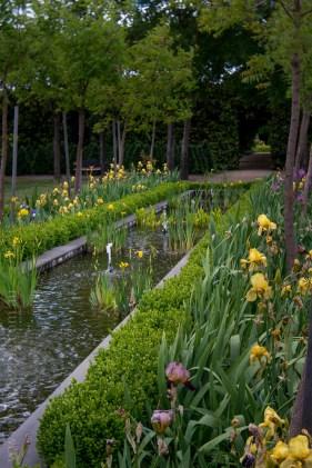 alowyn-gardens-lensbaby-velvet56-yarraglen-2140