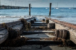 flinders-pier-morning-morning-0175
