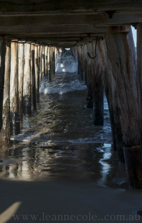 pointlonsdale-20140319-2996