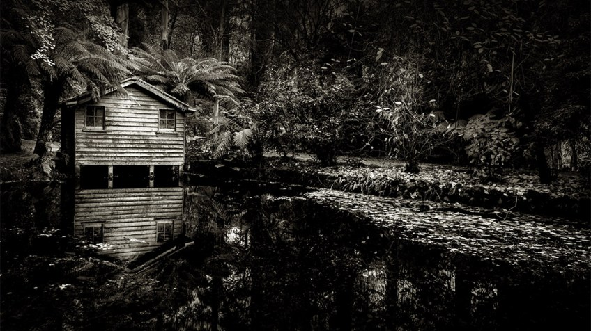 monochrome-alfred-nicholas-gardens-reflections