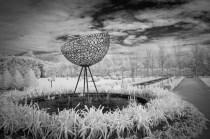 alowyn-gardens-infrared-yarraglen-22908
