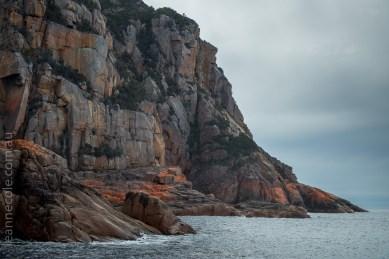 tasmania-trip-wineglassbay-boat-cruise-7874
