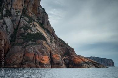 tasmania-trip-wineglassbay-boat-cruise-7878