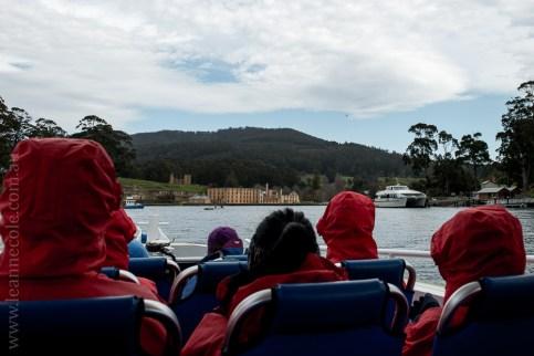 tasmanisland-cruise-pennicott-tasmania-cliffs-9177