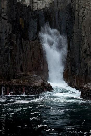 tasmanisland-cruise-pennicott-tasmania-cliffs-9593