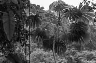 5/LOTSASMILES PHOTOGRAPHY