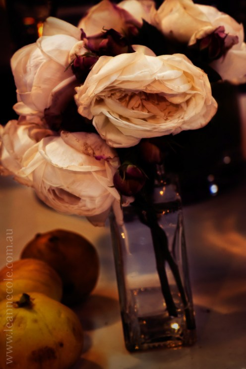 macro-photography-article-fineart-1-3