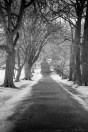 portarthur-tasmania-historic-site-infrared-24138