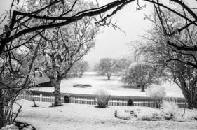 portarthur-tasmania-historic-site-infrared-24231