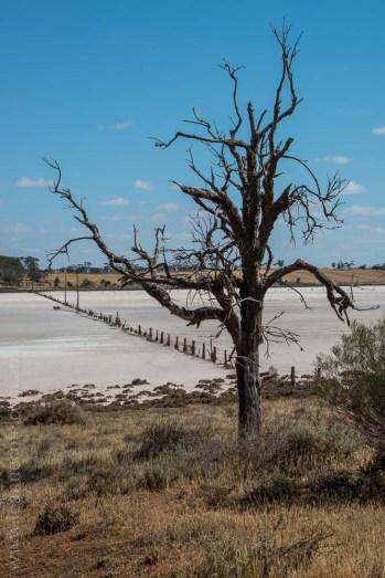 saltpans-salinity-SwanHill-rural-environment-2664