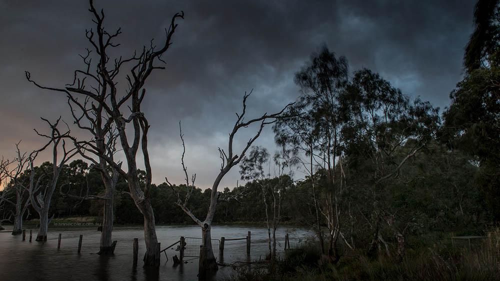 still-banyule-flats-storm-timelapse-2-6791