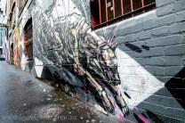 melbourne-lanes-street-art-graffiti-8904