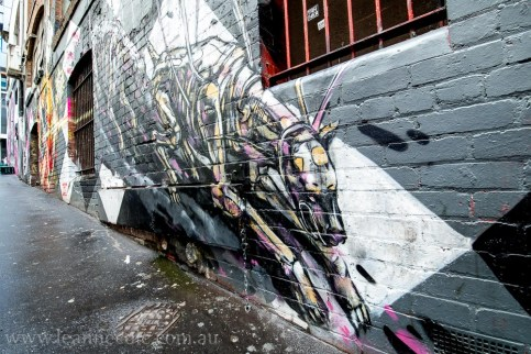 melbourne-lanes-street-art-graffiti-8904
