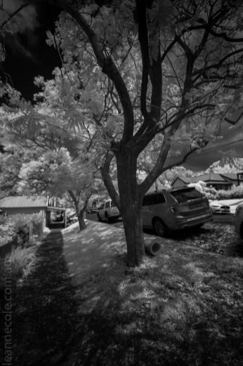 central-tilba-town-infrared-monochrome-25954