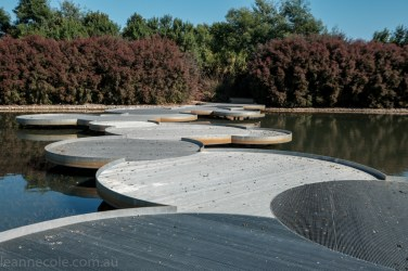 cranbourne-botannical-gardens-fujifilm-melbourne-9066
