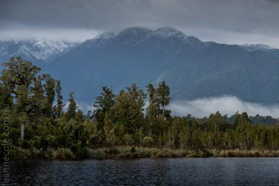 glacierlake-tours-boat-lake-rainforest-2664