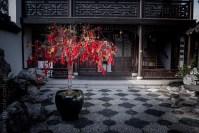 chinese-gardens-dunedin-autumn-newzealand-1086