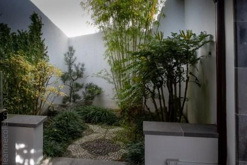 chinese-gardens-dunedin-autumn-newzealand-1142