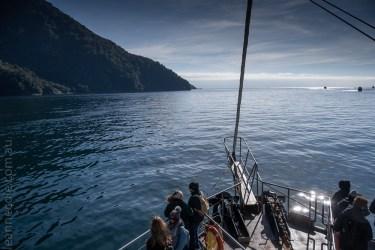 milford sound-boatcruise-fiordland-newzealand-0245